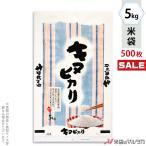 米袋 ポリ マイクロドット キヌヒカリ 和心 5kg用 1ケース(500枚入) PD-0028 [改]