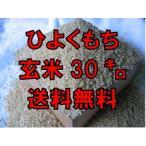 【令和2年産 新米入荷】佐賀県産 ヒヨクモチ 玄米30kg 送料無料 日本三大もち米処 佐賀より産地直送