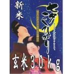 【令和2年産 新米入荷!】1等米限定 七夕コシヒカリ  玄米30kg 特別栽培米  幻の米 佐賀県産
