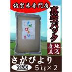 【真空パック 玄米 5kg×2】【令和元年産 新米】佐賀県産 さがびより 産地直送