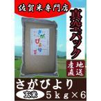 【真空パック 玄米 5kg×6】【令和元年産 新米】佐賀県産 さがびより 産地直送