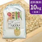 送料無料(北海道・九州・沖縄除く)  令和2年産 新米 玄米 特別栽培米 山形県産つや姫10kg