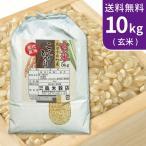 送料無料(北海道・九州・沖縄除く) 令和元年産 新米 玄米 最高級!魚沼産コシヒカリ10kg