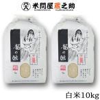 新米 28年産 龍の瞳 白米 10kg (5kg×2袋) (レビューで送料無料(一部地域除く))
