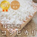 お米 コシヒカリ 千葉県産 令和2年産 検査一等米 玄米10kg/白米10kg 北海道・沖縄を除き送料無料