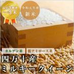 お米 ミルキークイーン 高知県四万十産 令和元年産 玄米10kg/白米9kg 北海道・沖縄を除き送料無料