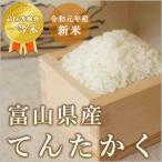 お米 てんたかく 富山県産 令和2年産 検査一等米 玄米10kg/白米10kg 北海道・沖縄を除き送料無料