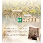 コシヒカリ 新潟産 【平成27年産】 白米10キロ  北海道・沖縄を除き送料無料