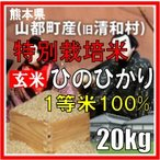 平成29年産 玄米 熊本県山都町産 特別栽培米 ひのひかり 20kg