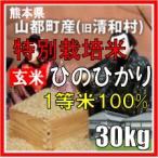 平成29年産 玄米 熊本県山都町産 特別栽培米 ひのひかり 30kg
