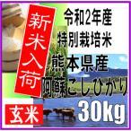 平成29年産 玄米 新米 熊本県産 特別栽培米 阿蘇こしひかり 30kg
