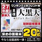米 20kg お米 安い 大黒天 白米 10kg×2袋 国産 最安値挑戦中 ブレンド米