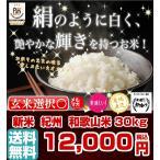 和歌山米 30kg 米 お米 和歌山産 新米 白米 玄米 令和元年産 送料無料 和歌山県産 タイムセール