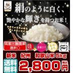 和歌山米 5kg 米 お米 和歌山産 新米 白米 玄米 令和元年産 送料無料 和歌山県産 タイムセール