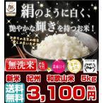 無洗米 和歌山米 5kg 米 お米 和歌山産 新米 白米 玄米 令和元年産 送料無料 和歌山県産 タイムセール