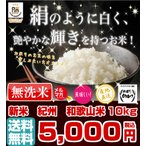 無洗米 和歌山米 10kg 米 お米 和歌山産 新米 白米 玄米 令和元年産 送料無料 和歌山県産 タイムセール