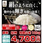 和歌山米 10kg 米 お米 和歌山産 新米 白米 玄米 令和元年産 送料無料 和歌山県産 タイムセール