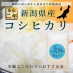 コシヒカリ 5kg お米 米 白米 こしひかり 新潟県 29年産 送料無料