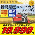 玄米 30kg コシヒカリ 米 白米選択可(27kg) こしひかり 新潟県 29年産 送料無料
