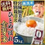 28年産 特別栽培 宮城加美産 ひとめぼれ 金芽米 5kg  金芽米 無洗米 米 お米