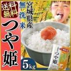 令和元年産 お米 米5kg 5キロ 無洗米 宮城県産 つや姫 5kg 米 ごはん うるち米 精白米
