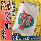 ショッピング玄米 新米 30年産 お米 30kg つや姫 宮城県産 玄米 米 ごはん 送料無料