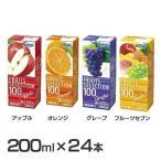 フルーツジュース 24本 オレンジ アップル グレープ ミックス FRUITS SELECTION 100  エルビー (D)