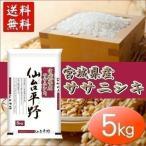 お米 29年産 5キロ 宮城県産 ササニシキ ささにしき 仙台平野 5kg 米 ごはん うるち米 精白米
