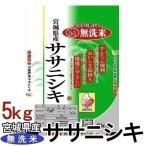 練和元年産 米5kg お米 5キロ 無洗米 宮城県産 ササニシキ ささにしき 5kg 米 ごはん うるち米 精白米