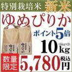 お米 10kg 28年産 新米 1等米 北海道産 特別栽培米(減農薬) ゆめぴりか 5kg×2袋