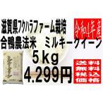 米 29年度産 滋賀県産 フクハラファーム栽培 合鴨農法 ミルキークイーン 5kg