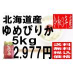 米 29年度産 北海道産 ゆめぴりか 5kg