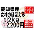 米 29年度産 愛知県豊橋産 女神のほほえみ 2kg