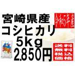 米 29年度産 宮崎県産 コシヒカリ 5kg