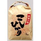 贈答用米袋 美味一筋こしひかり 10kg 512 100枚セット