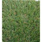 リアル人工芝ヴィクトリア パイル厚3cm 幅1m×16m巻