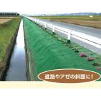 極厚防草シートタフマット 幅2m×長さ20m