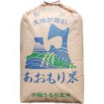 【28年産】玄米 10kg 青森 青天の霹靂(へきれき)