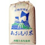【新米】玄米 20kg 青森 青天の霹靂(へきれき)