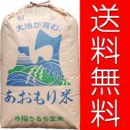 【28年産】玄米 2kg 青森 青天の霹靂(へきれき) レターパックプラス