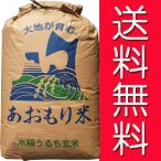 【28年産】玄米 30kg 青森 青天の霹靂(へきれき)