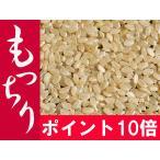 ポイント10倍 【とれたて】玄米 10kg お米 「もっちり」