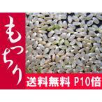 ポイント10倍 【とれたて】玄米 30kg お米 「もっちり」