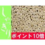 ポイント10倍【元年産】玄米 5kg お米 「しやっきり」