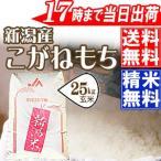 もち米30kg 新米!平成28年産 特別栽培米〔もち米〕新潟産こがねもち玄米30kg(精米無料)※送料無料(一部地域を除く)