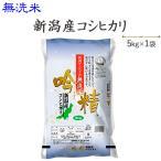令和元年産 お米 5kg  無洗米 新潟産コシヒカリ5kg 送料無料(一部地域を除く)※発送に2.3日かかる場合があります。