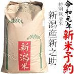 精米 新潟県産 新之助 平成30年産 安心安全な特別栽培米 越後の米穀商高田屋  5kg