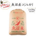 新米 令和元年産 お米 25kg  特A魚沼産コシヒカリ玄米25kg / 白米4.5kg×5 当日出荷 送料無料(一部地域を除く)