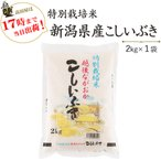 新米 お米 2kg 特別栽培米新潟産こしいぶき2kg×1袋 29年産 送料無料(一部地域を除く)