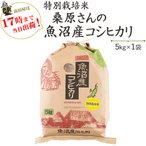 米 5kg×1袋 白米  桑原さんの魚沼産コシヒカリ 安心・安全 特別栽培米 28年産 送料無料(一部地域を除く)